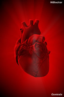 Wallpaper especialidades: Cardiologia